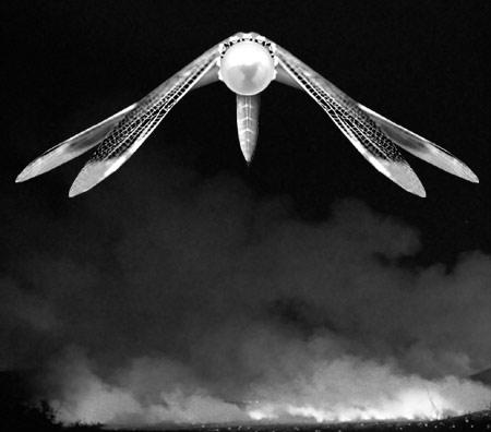 ザムーンドラゴンフライ2