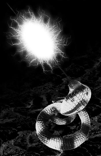蛇テロル02