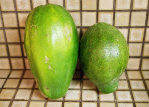 old papaya