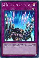 card100058422_1