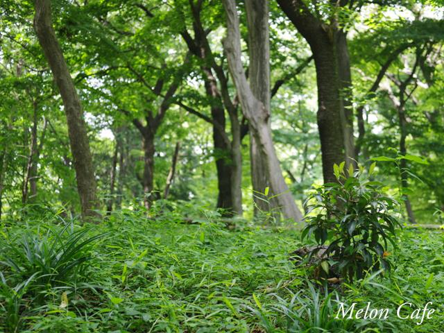 三鷹の森ジブリ美術館16