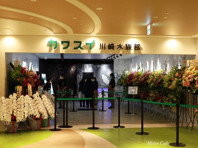 川崎水族館カワスイ20200717002