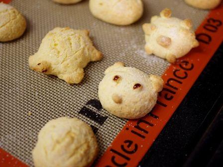 ホットケーキミックスとパパンでつくるカメロンパンのミニクッキー09