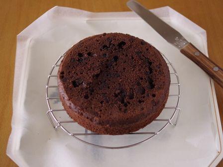 お誕生日ケーキ白とチョコのねこあつめケーキきっどさん03