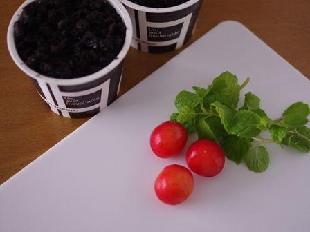 植木鉢ケーキ簡単ティラミス08