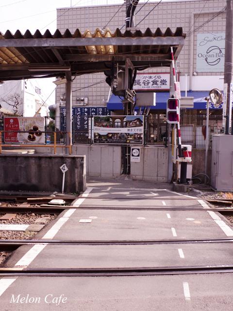 鎌倉観光おいしいもの20170310