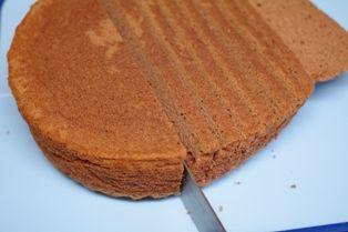 チョコレートチーズドーム01