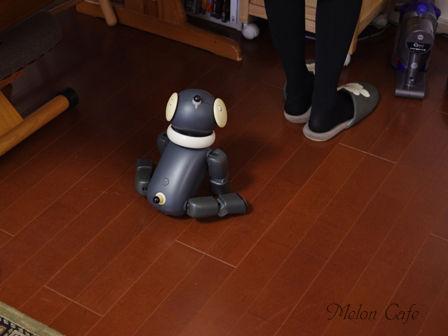 めろんカフェ2016レシピブログ様企画撮影の様子02