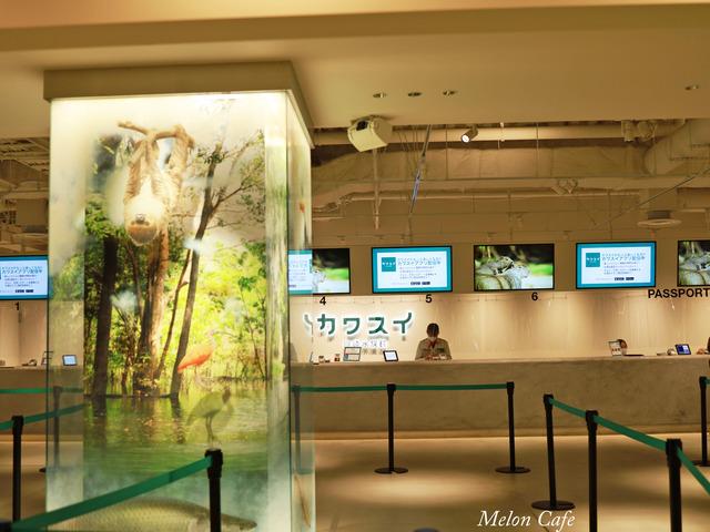 川崎水族館カワスイ20200717001