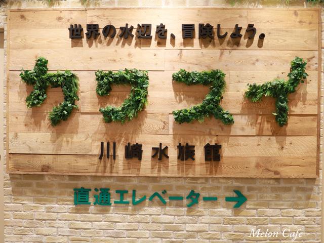 川崎水族館カワスイ20200717043