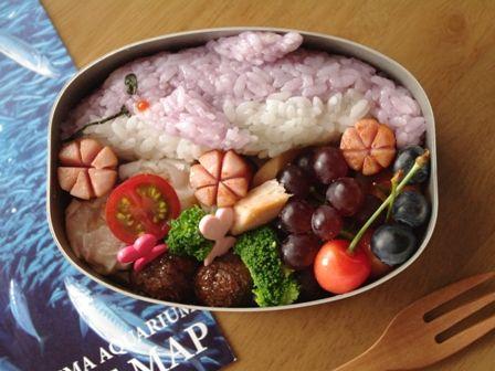 イルカのお弁当