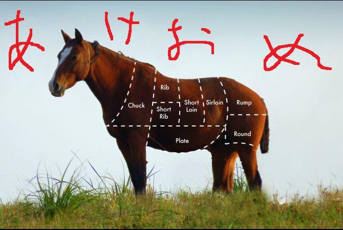 horsemeatchart