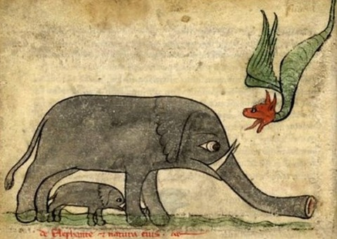 Middle Ages elephants 5