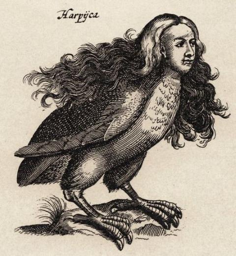 Ulisse Aldrovandi's Monstrorum Historia, Bologna, 1642