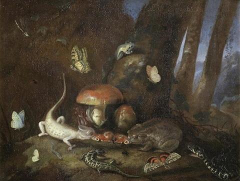 Otto Marseus van Schrieck A Forest Floor Lizards