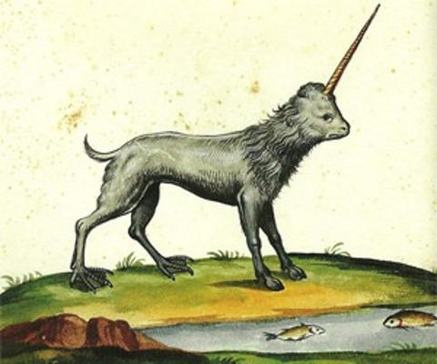 Ulisse Aldrovandi Monstrorum Historiae 1658