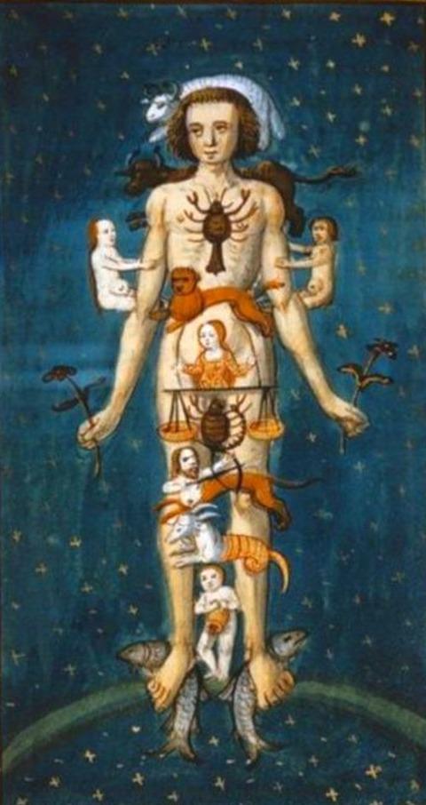 Zodiac Man, 15th  by an unknown artist