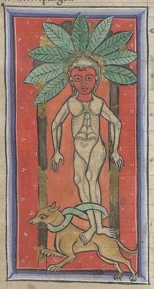 Medieval Bestiary