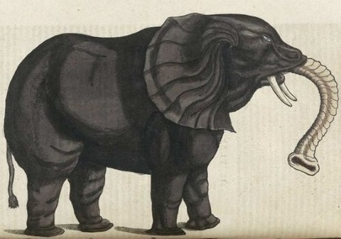 Middle Ages elephants 14