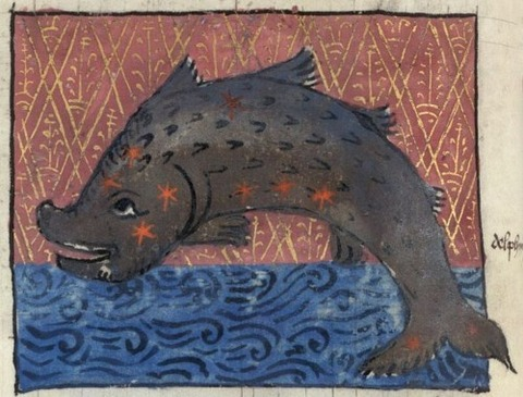 Constellation of Delphin British Library  1490