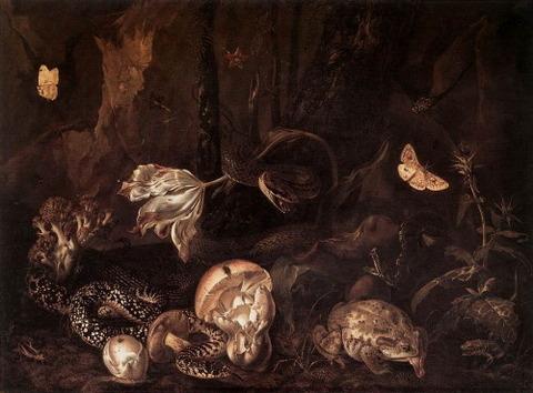 Otto Marseus van Schrieck Stilleben Insekten Amphibien 1662