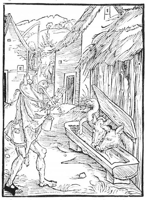 Dürer 2