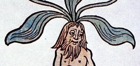 Hortus sanitatis, Mainz, 1491 -