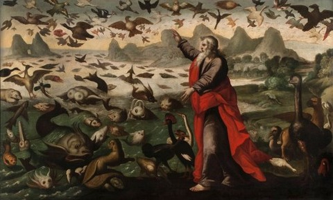 The Creation Of The Birds And Fish by Flemish School