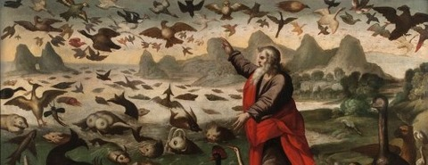 The Creation Of The Birds And Fish by Flemish School -
