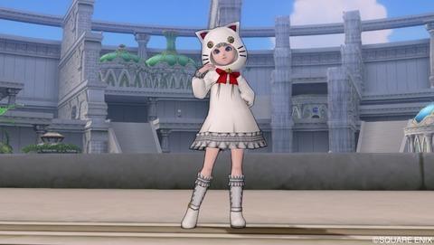 白ネコ子供
