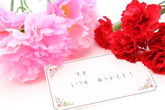 img_ippitsu_tokutyo2