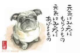 yjimageHIQF9N1A