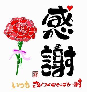 kansyaarigatougozaimasu4carnation[1]