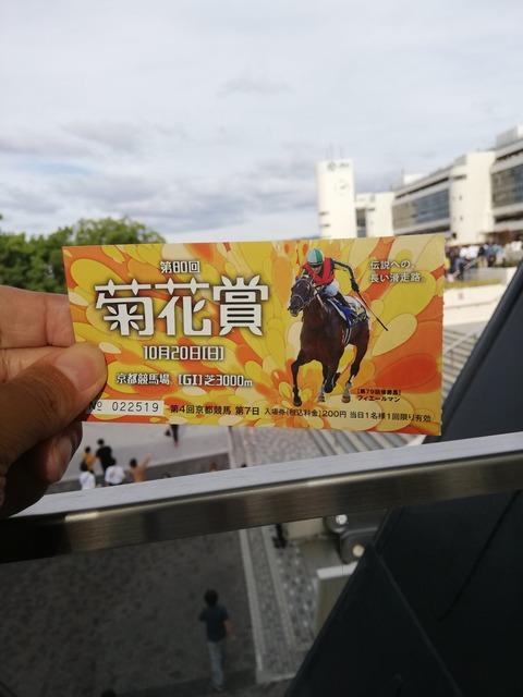 菊花賞2019写真