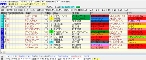 ステイヤーズS2019結果