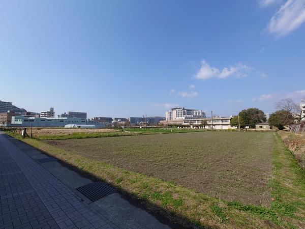 DSC_8716