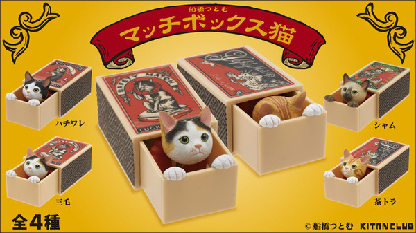match_box_cat