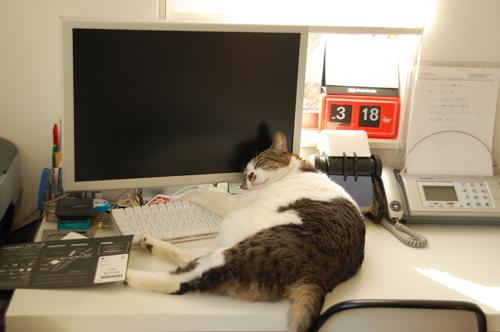 机の上が乱雑なのは気にしないで下さい。。。