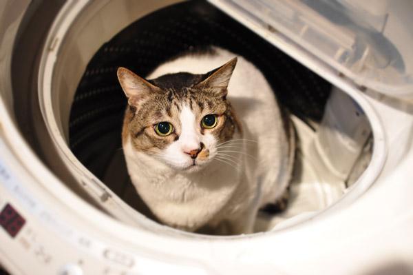 洗濯槽が深くて持ち上げられないのです...。