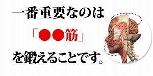 英語マッスルイングリッシュ夏目03