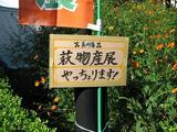 20071028_祭り_02