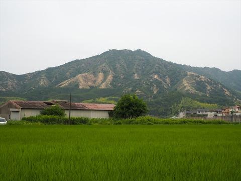 里山を渡る【2020.06 愛媛県今治市 笠松山 登山編】