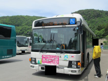 うどんたま:2015年5月期山梨県旅行 part1 富士山芝桜祭り