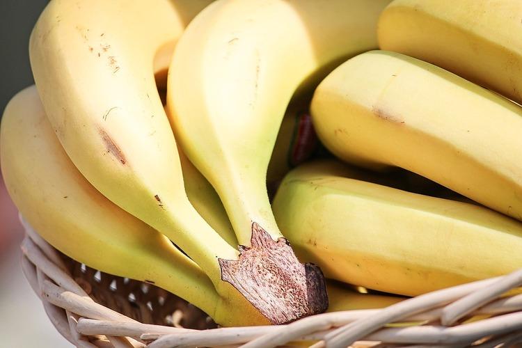 国産バナナ、皮ごとどうぞ 味濃厚でシャキシャキ食感