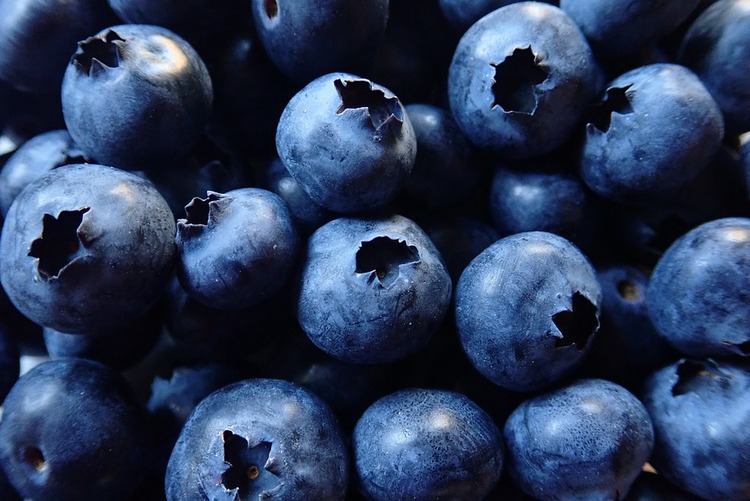 blueberries-3682754_960_720