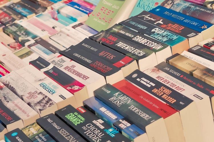 books-3237878_960_720