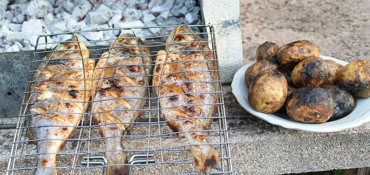 grilled-fish-3779810_960_720
