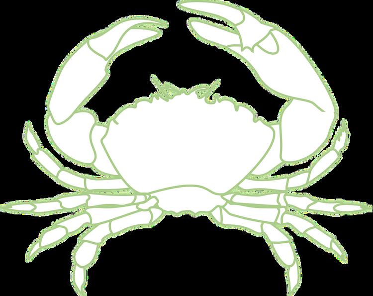 crab-296820_960_720