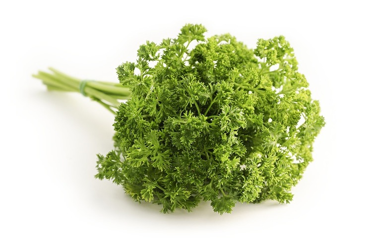 parsley-1665402_960_720