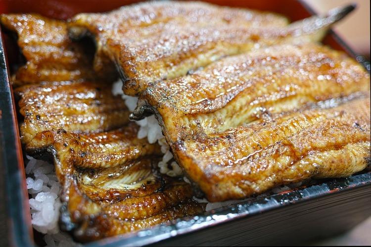 japanese-food-1865271_960_720